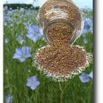 benefit-of-flax-seed-oil.jpg