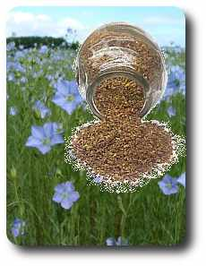 Flaxseed and Gout - a Uric Acid Update