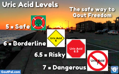Uric Acid Levels graphic