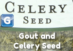 Gout and Celery Seed Photo