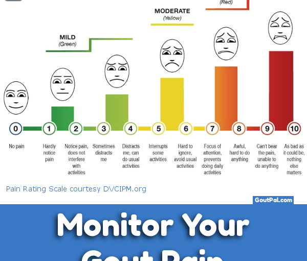 Monitor Your Gout Pain chart