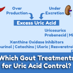 Which Gout Treatments for Uric Acid Control image