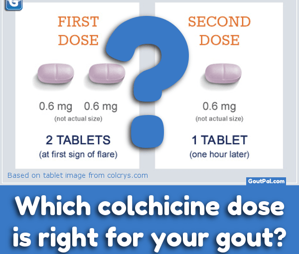Which Colchicine Dose For Your Gout photo