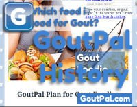 Gout Foodie Document Revision History