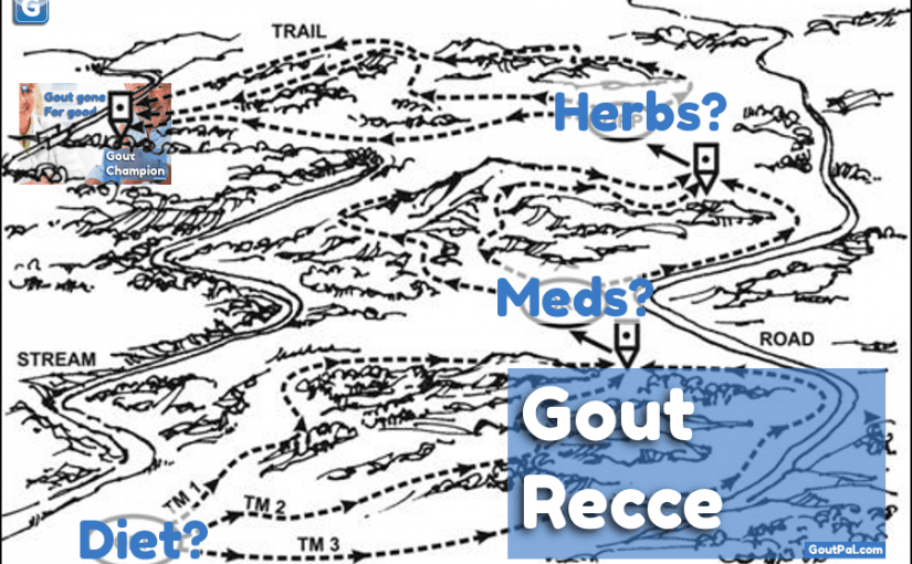 GoutPal Plan for Gout Seekers