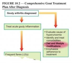 Gout Diet is part of Management Plan